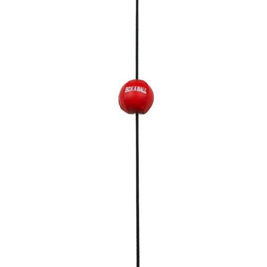 Box A Ball Mini Floor to Ceiling Ball
